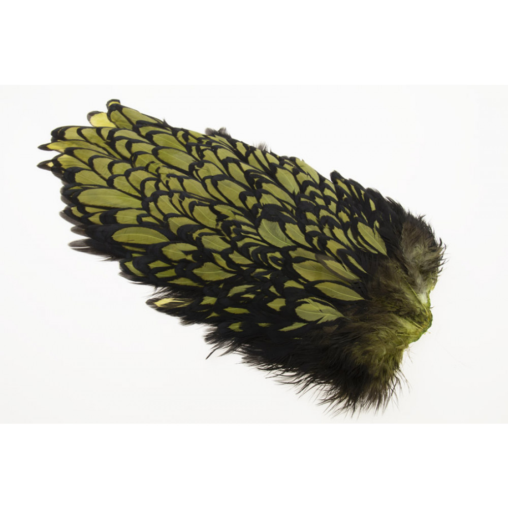 Whiting American Hen Saddle Black Laced - Olive