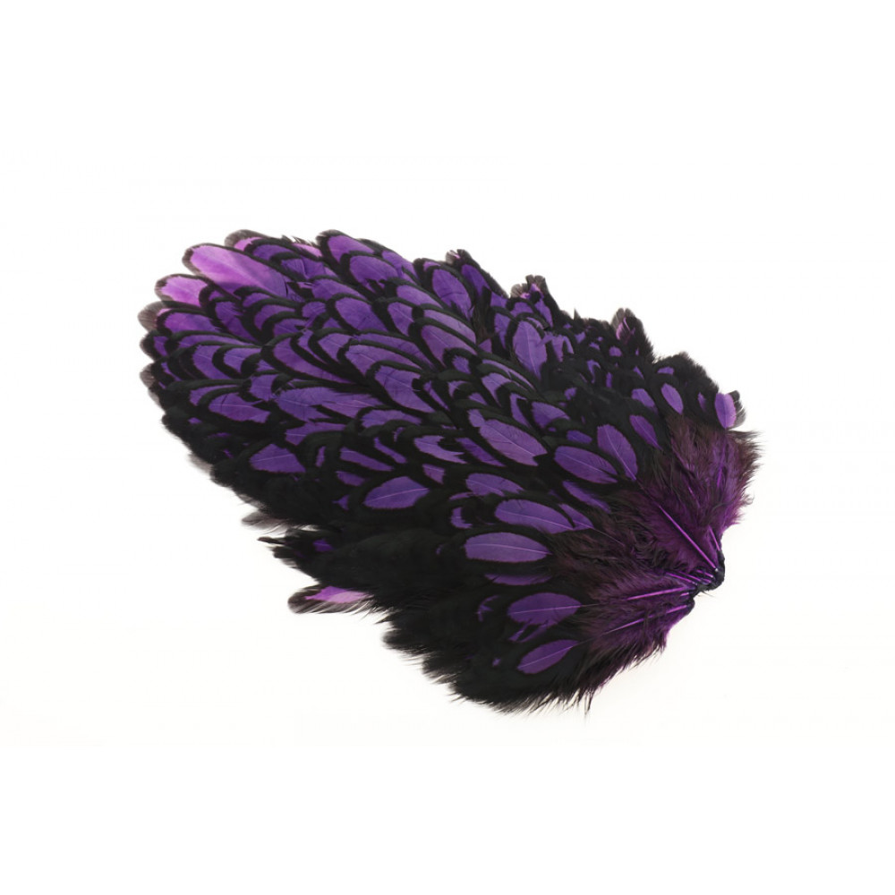 Whiting American Hen Saddle Black Laced - Purple