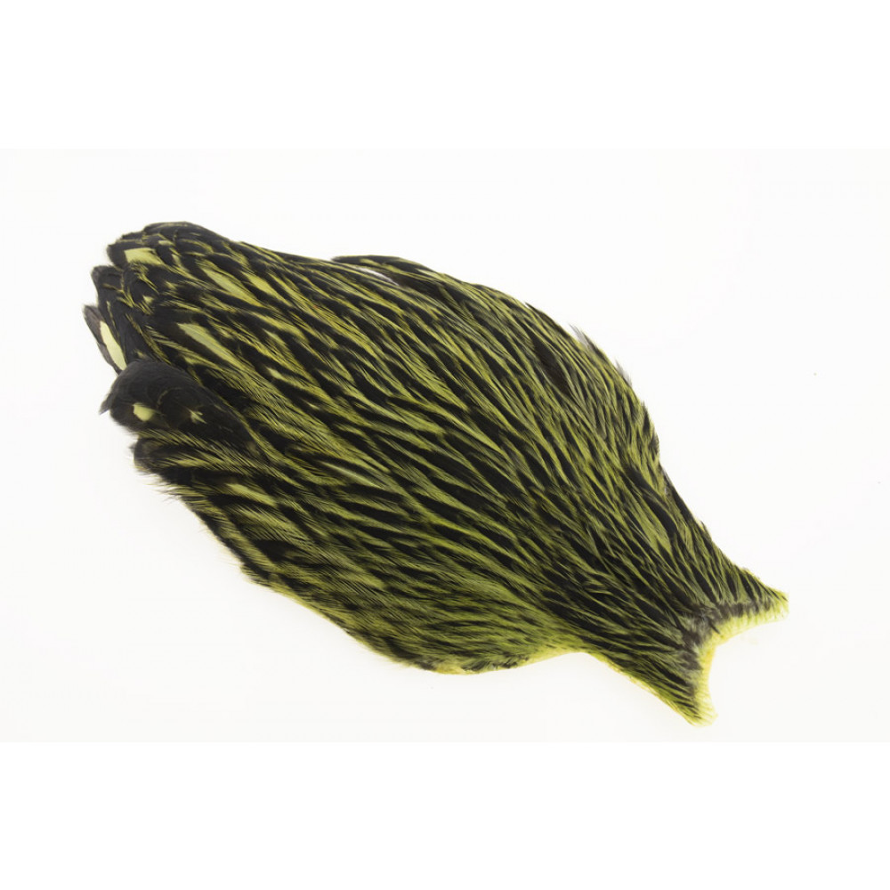 Whiting American Hen Cape Black Laced - Olive