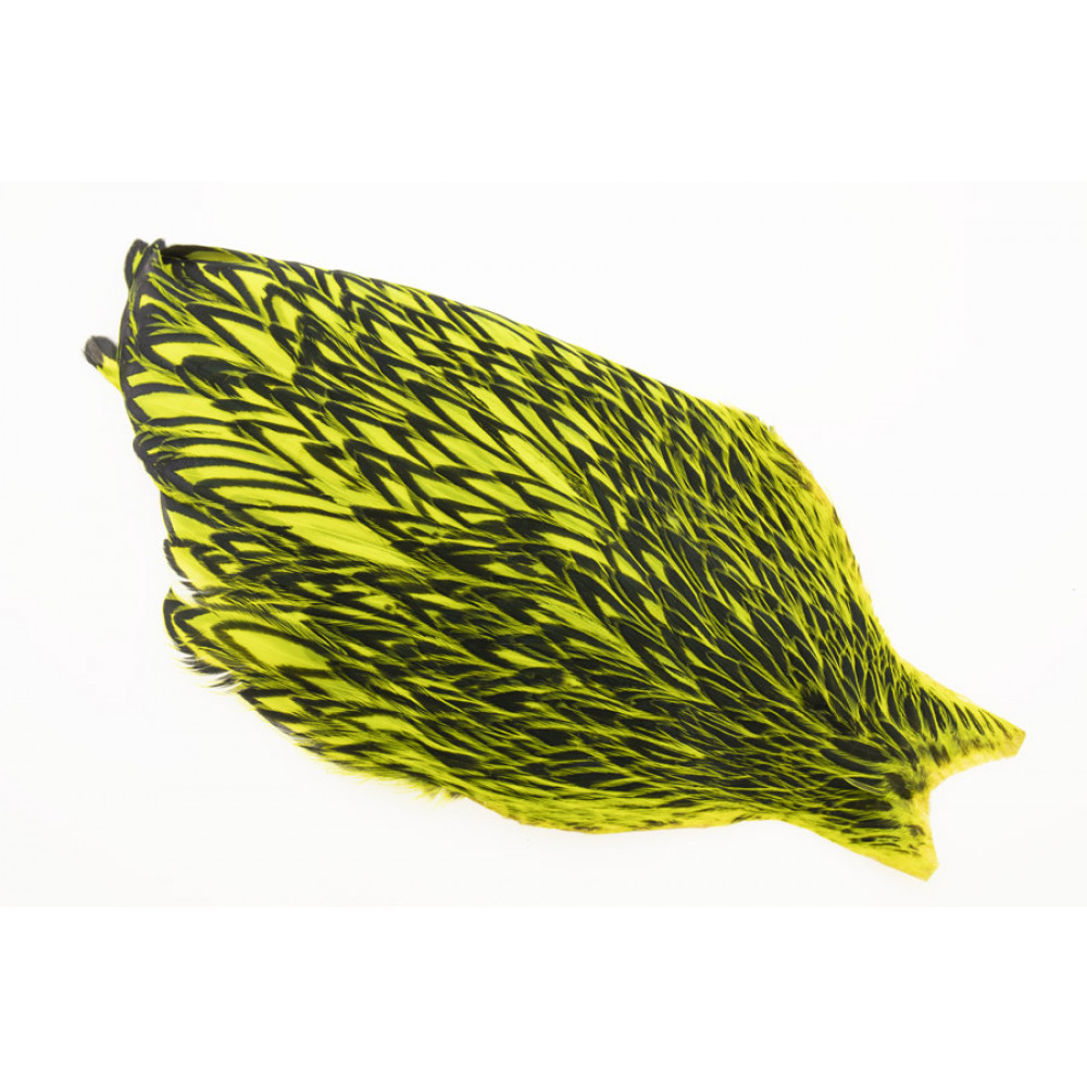 Whiting American Hen Cape Black Laced - Fl. Yellow Chartreuse