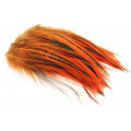 Hane Hackler Badger - Fluo. Orange