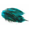 Hane Hackler Badger - Kingfisher Blue