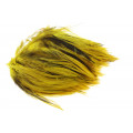 Hane Hackler Badger - Yellow