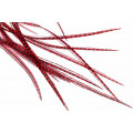 10+Selected Flatwing/dryfly Feathers - Grizzly Red