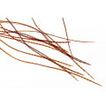 10+ Selected Flatwing/dryfly Feathers - Grizzly Orange