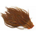 Cascade Grizzly sadel - Grizzly Burnt Orange