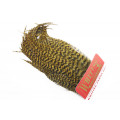 Whiting Bugger Pack - Grizzly Golden Olive