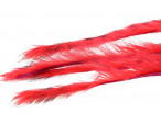3 mm Rabbit Barred zonkerstrip - Fl. Red