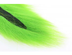 Bucktail Large Chartreuse (FL )