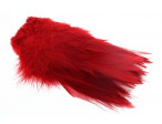 Strung Rooster Saddle Long Feathers - Red