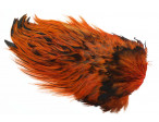 Whiting Rooster saddle - Badger Burnt Orange