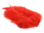 Whiting Rooster saddle - Red