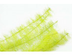 "Streamer Brush 1/2"" (1,3 mm) - Electric Yellow"
