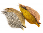 Starter Pack Whiting Coq de leon 4 pack - Kyst (Grizzly/Copper/Pardo/Salmon)