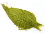 Whiting High n dry - White dyed Olive