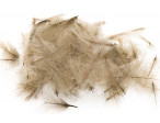 Feathermaster Select Cdc L 1 gram - Lt. Brown Ox