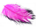 Tip dyed Ostrich Herl - Cerise/Black