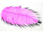 Tip dyed Ostrich Herl - Pink/Black