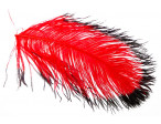 Tip dyed Ostrich Herl - Red/Black