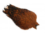 Whiting American Rooster cape - Black laced Brown