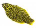 Whiting American Hen Cape Black Laced - Yellow