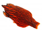 Whiting American Hen Cape Black Laced - Orange
