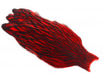 Whiting American Hen Cape Black Laced - Red