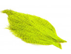 Whiting Coq De Leon Cape - Badger Dyed Fluo. Yellow Chartreuse