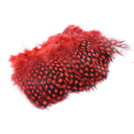 Guinea Fowl - Red