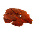 Whiting Whole pearl hen- Orange
