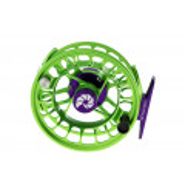 Nautilus XL (#6-8) Green/purple