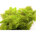 Grizzly marabou - Chartreuse