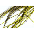 Loose Pike saddle Feathers - Grizzly Yellow