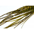 Loose Pike saddle Feathers: Grizzly Olive