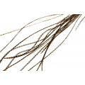 Loose Flatwing feather grade 1: Grizzly Brown