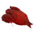 Whiting Rooster Saddle - Yellow