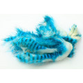 Tiger Barred Magnum Rabbit Strips - Blue/ Black over White