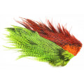 Whiting Rooster Coq de leon Predator pack - Chartreuse/Orange