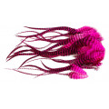 Loose Pike saddle Feathers - Grizzly Pink