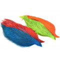Whiting Coq de leon Starter pack - Red/Chart/Orange/blue