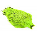 Whiting Freshwater Streamer Cape - Silver badger/Fl. Green Chartreuse