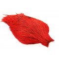 Whiting Freshwater Streamer Cape - Silver badger/Red