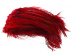 Hane Hackler Badger - Red