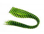 Grizzly Hair - Flou. Green Chartreuse