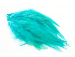 Loose hackles - Kingfisher Blue