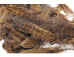 Metz Soft hackles - Grizzly Brown