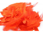 Metz Soft hackles - Hot Orange