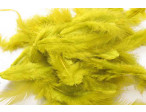 Metz Soft hackles - Golden Yellow Olive