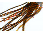 Loose Pike saddle Feathers: Grizzly Orange