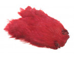 Hen patch (Indian) - Indian Crow Red